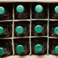 Photo of Pivní rynek osvěží Teplice už popáté